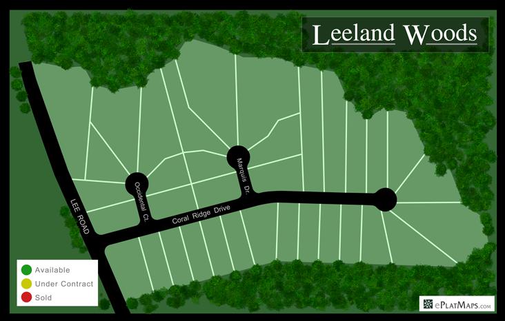 Dynamic Map